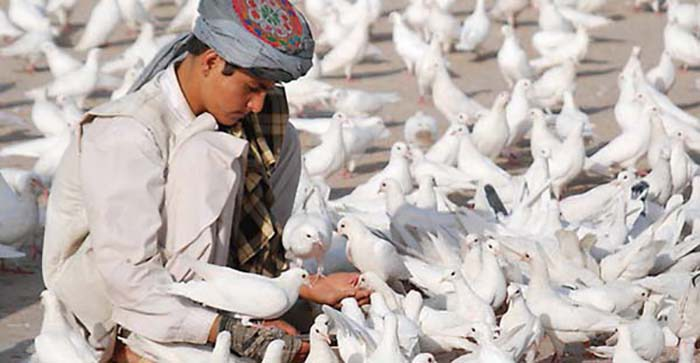 روند صلح افغانستان؛ چالشها و فرصتها