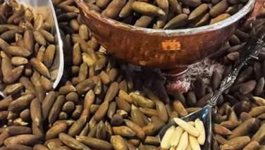 وزارت زراعت: میزان صادرات جلغوزه افغانستان میتواند به یک میلیارد دالر در سال برسد