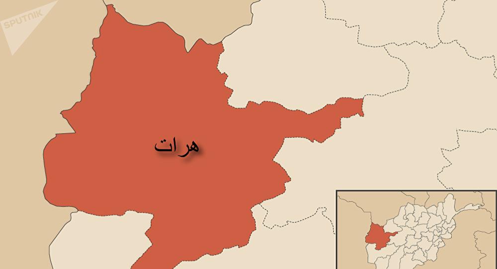 راه اندازی بزرگترین یتیم خانه افغانستان در ولایت هرات
