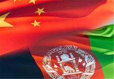 میزان صادارات افغانستان به چین ۲۰ درصد افزایش یافته است